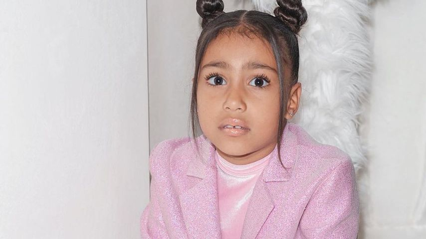 North West, Reality-Star