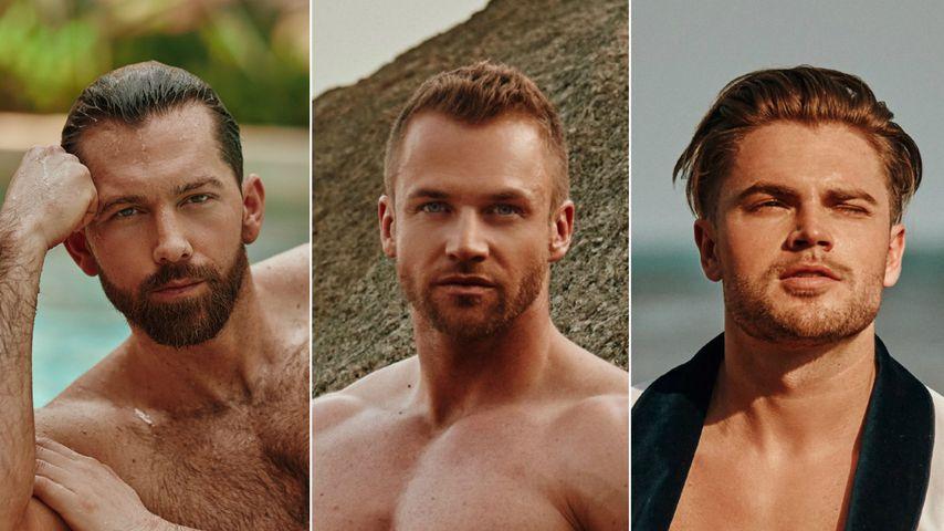"""Bachelor in Paradise""-Fotos: Wer ist euer Hahn im Korb?"