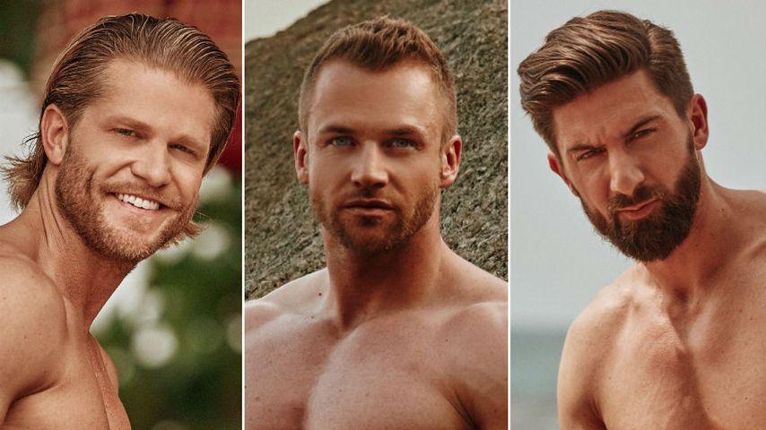 """""""Bachelor in Paradise"""": SIE sind die beliebtesten Kandidaten"""