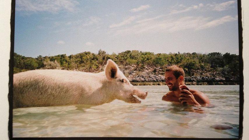 Emotionaler Post: Meadow gedenkt ihres Vaters Paul Walker!