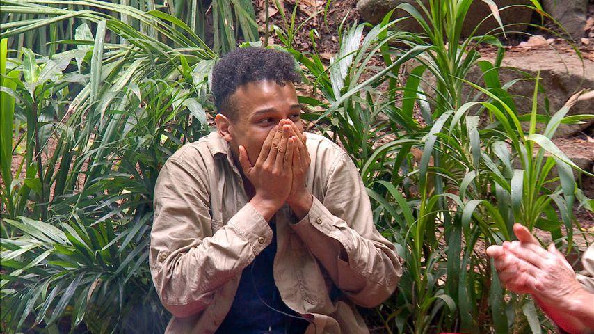 Dschungelcamp abgesagt! RTL plant stattdessen Ersatzshow
