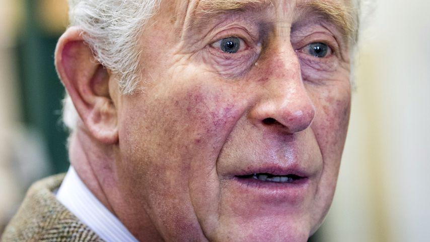 Prinz Charles bei einer Veranstaltung in England