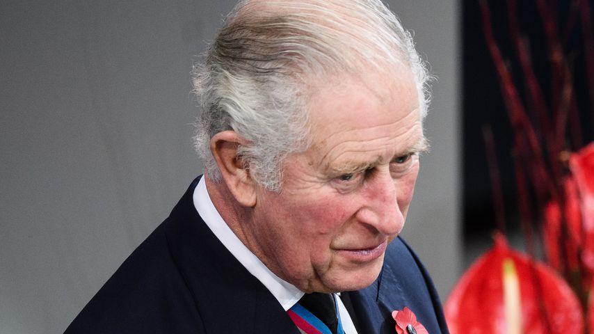 Prinz Charles im Deutschen Bundestag am 15. November 2020