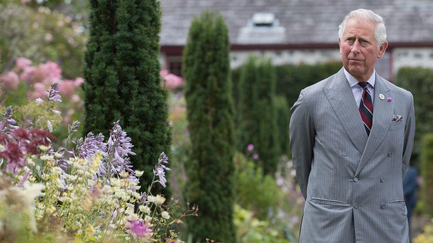 König des grünen Daumens: Prinz Charles liebt seinen Garten