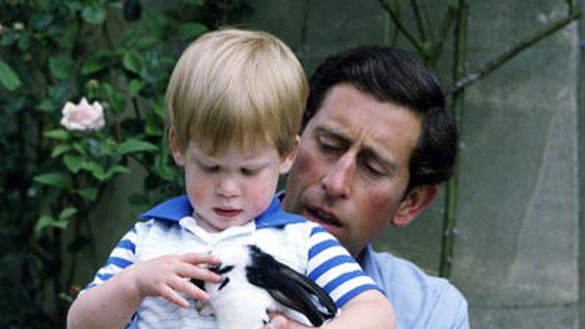 Prinz Charles und Prinzessin Diana mit ihrem Sohn Harry