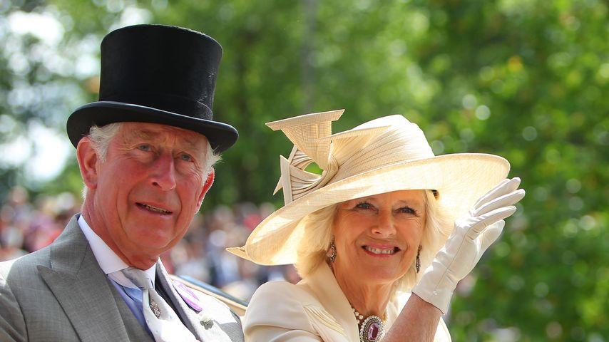 Jubel-Jubiläum: Prinz Charles & Camilla feiern Rosenhochzeit
