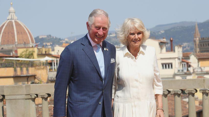Britische Royals trauern: Camillas Bruder ist tot!