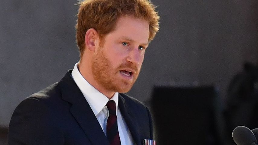 Prinz Harry beim Gedenktag der Kriegsopfer des Ersten Weltkriegs, Frankreich