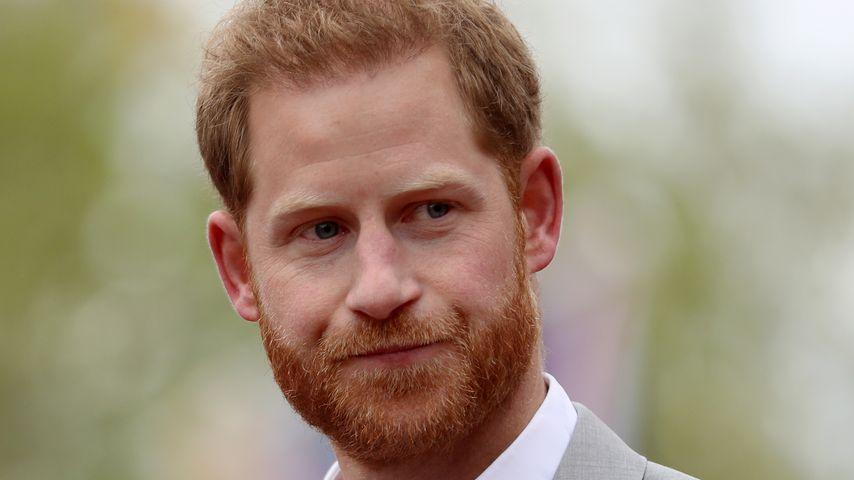 Angebundener Elefant: Shitstorm für Bald-Papa Prinz Harry