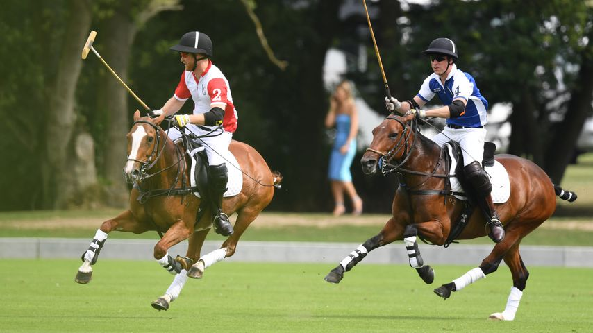 Prinz Harry und Prinz William beim King Power Royal Charity Polo Day