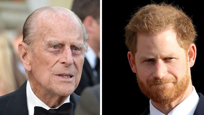 Wegen Prinz Philip: Harry bereitet sich auf Ernstfall vor