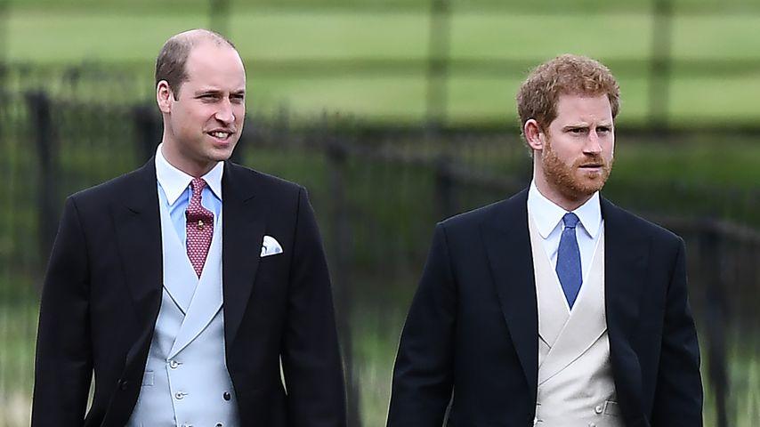 Prinz William und Prinz Harry, Söhne von Prinzessin Diana