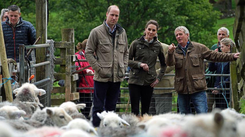 Prinz William und Herzogin Kate in Cumbria