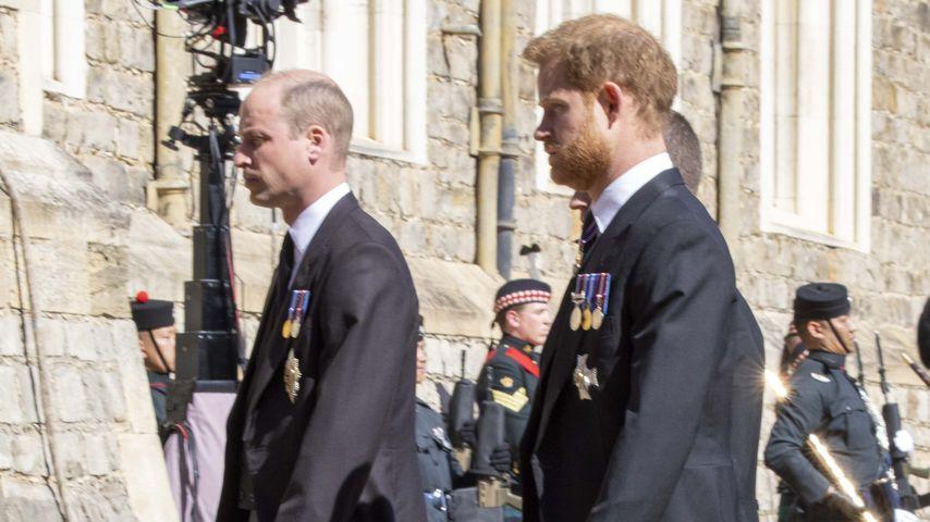 Prinz William und Prinz Harry bei Prinz Philips Beerdigung