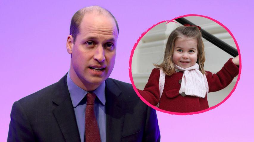 Verzweiflung: William kommt nicht mit Charlottes Haaren klar