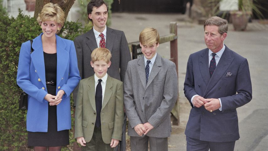 Prinzessin Diana, Andrew Gailey, Prinz Charles, Prinz Harry und Prinz William, 1995