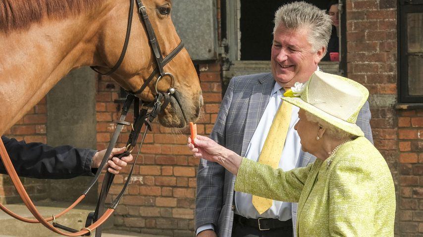 Queen Elizabeth II mit Trainer Paul Nicholls und seinem Pferd