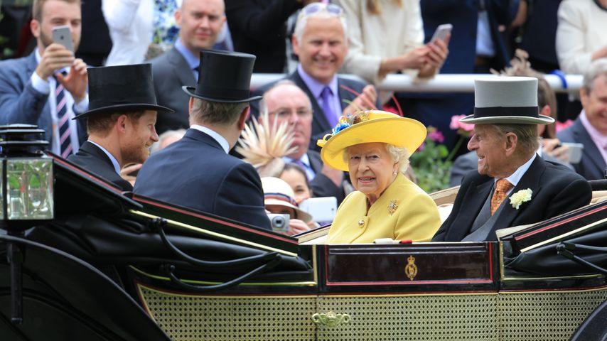 Royale Zeremonie: Die Queen führt ihre Single-Prinzen aus