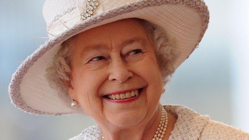 Isolation der Queen: Keine Menschen, aber 100 Wellensittiche