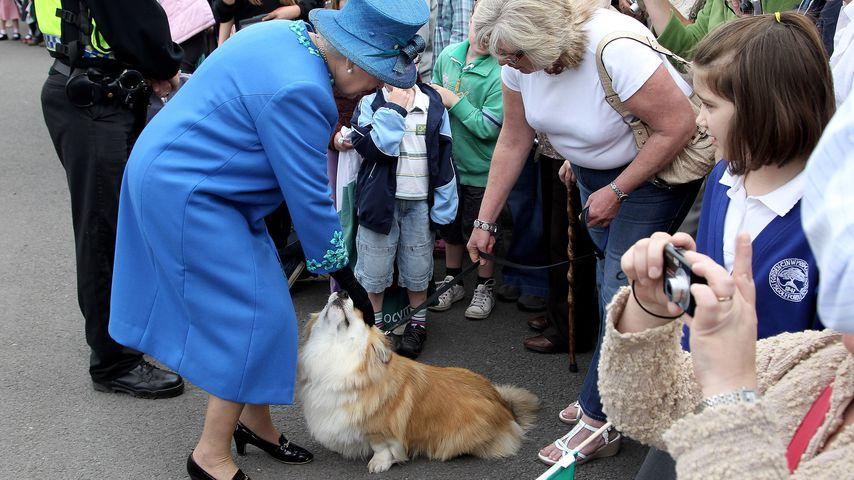 Queen Elizabeth II. im April 2010