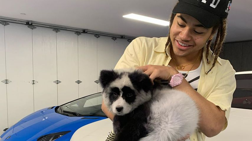Rapper 24kGoldn mit einem Hund auf dem Arm