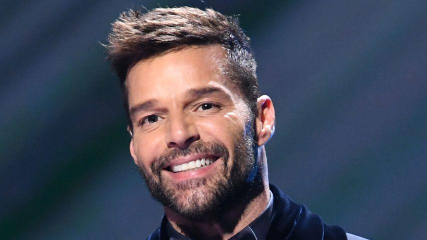 Ricky Martin, Musiker