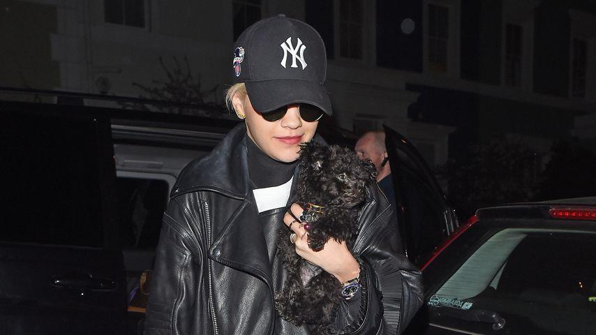Knuddelig! Ihn liebt Rita Ora mehr als ihren Freund