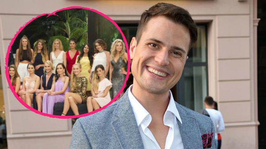 """Rocco Stark über Bachelor-Mädels: """"Melden sich eh bei mir!"""""""