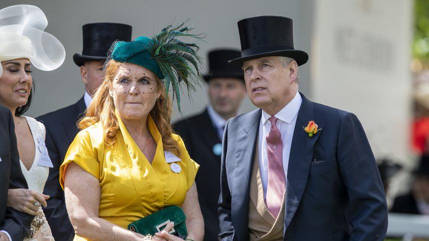 Während Prozess: Heiraten Prinz Andrew und Ex Sarah wieder?