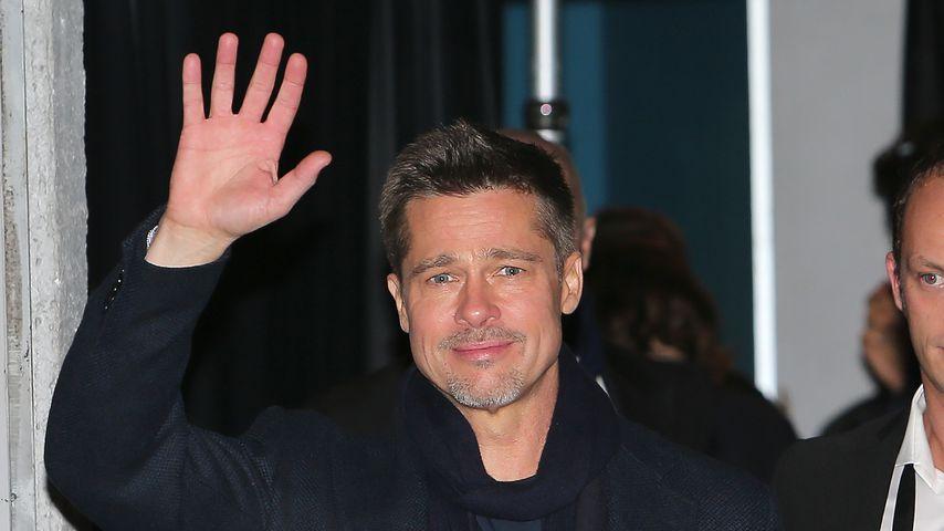 Töpfer-Kunst: So kreativ verarbeitet Brad Pitt die Scheidung