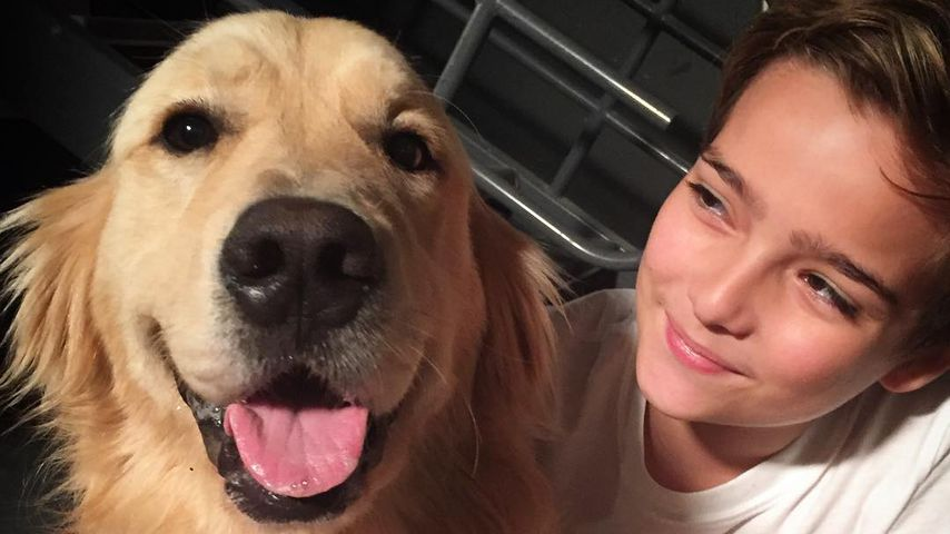 """""""Fuller House""""-Cast in Trauer: Serien-Hund Cosmo ist tot!"""