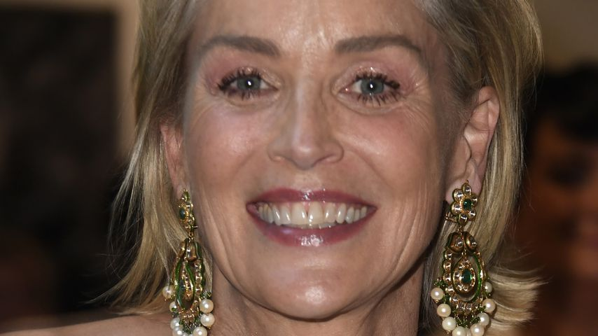 Sharon Stone in Los Angeles