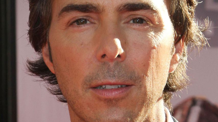 Shawn Levy, Regisseur
