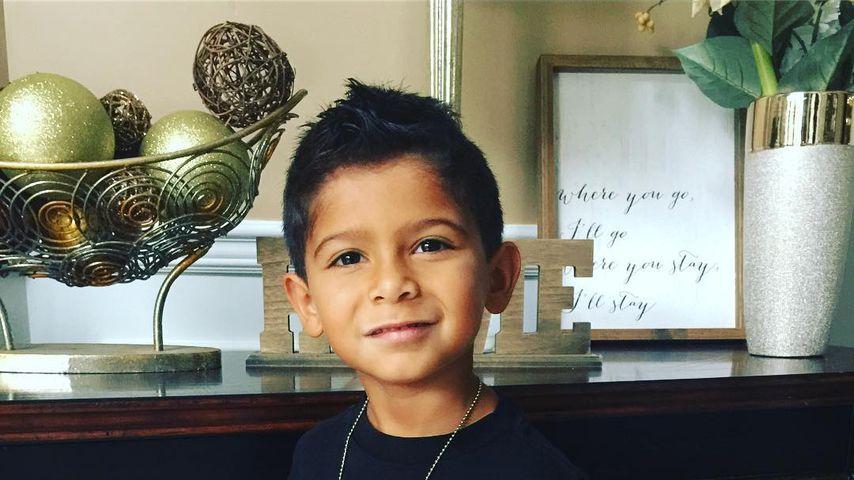 Snookis Sohn Lorenzo, September 2018