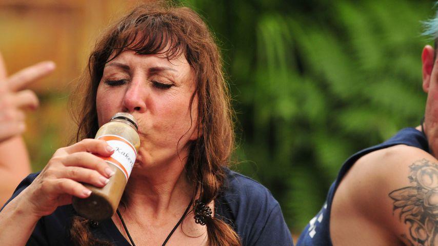 Dschungel-Intervention: Die Camper sorgen sich um Tina York!