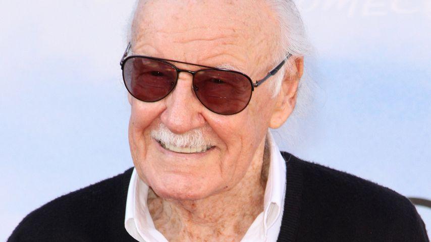 Stan Lee, Autor