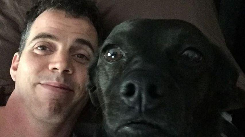 Nach Verurteilung: Steve-O nach 8 Stunden wieder in Freiheit