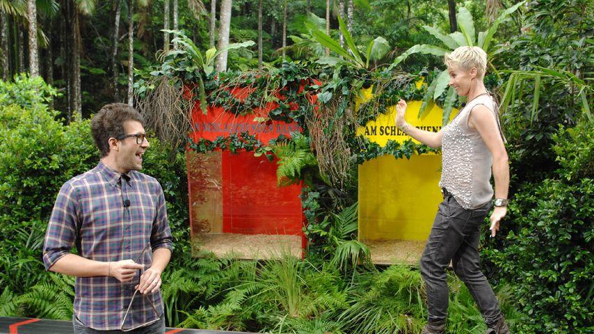 Dschungelcamp: Quoten-Bestwert für Finale geknackt