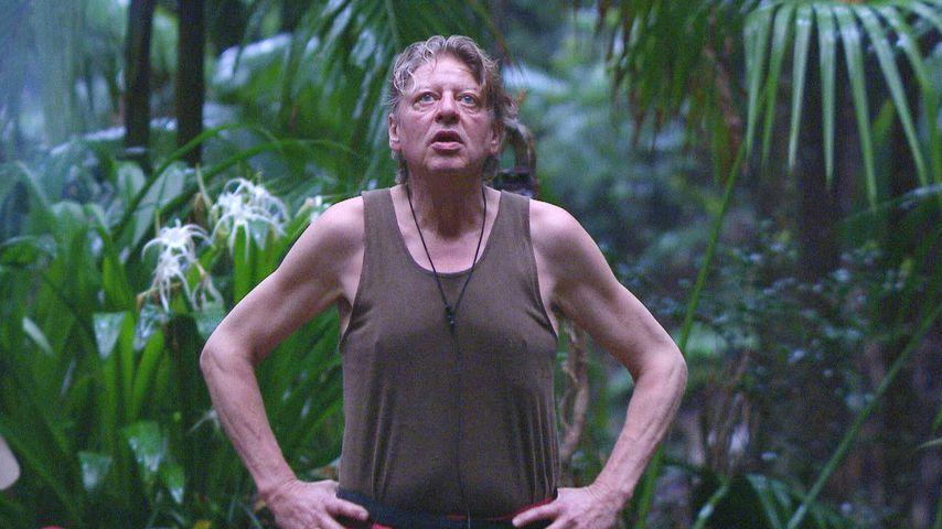 Dschungel-Boom: So viele Leute sahen Walters Aus