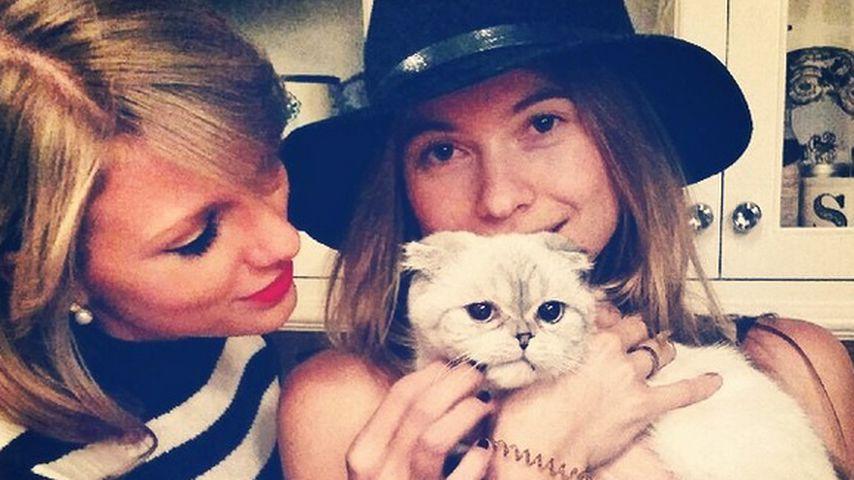 Süß hoch drei! Mieze bezirzt Taylor Swift & Behati