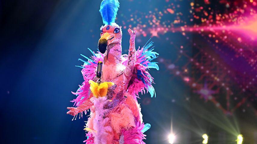 "Der Flamingo bei ""The Masked Singer"" 2021"