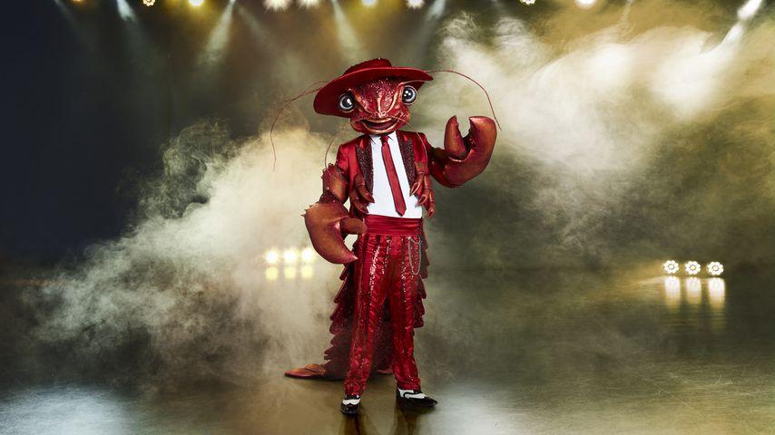 """""""The Masked Singer""""-Hummer"""