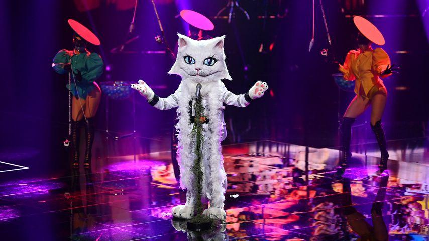 """The Masked Singer""-Katze im November 2020"