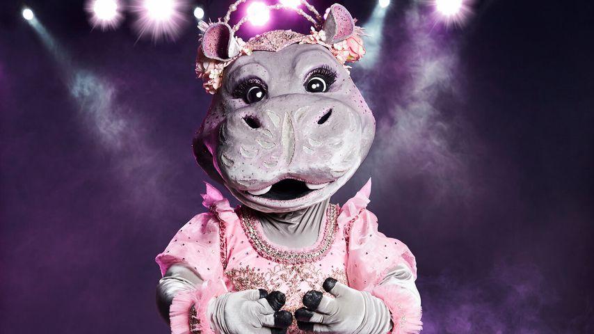 """""""The Masked Singer""""-Nilpferd"""