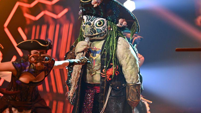 """""""The Masked Singer""""-Schildkröte"""