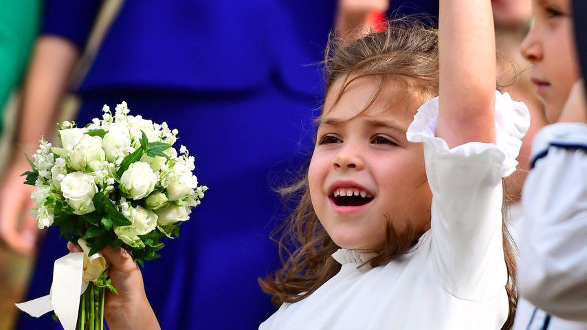 Theodora Rose Williams bei Prinzessin Eugenies Hochzeit
