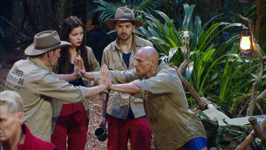 """""""Hulk"""" & """"Silikon-Amazone"""": Die neuen Rollen im Dschungel!"""