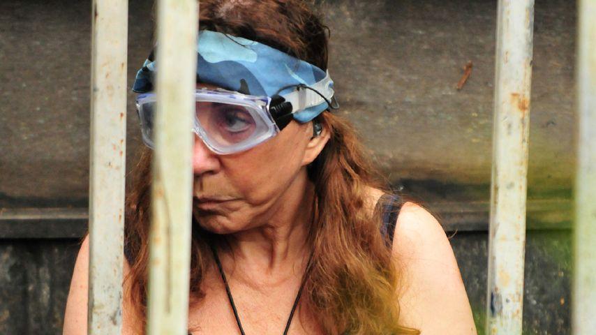 """Tina York in der finalen Dschungelprüfung """"Tierkammer"""" an Tag 16"""
