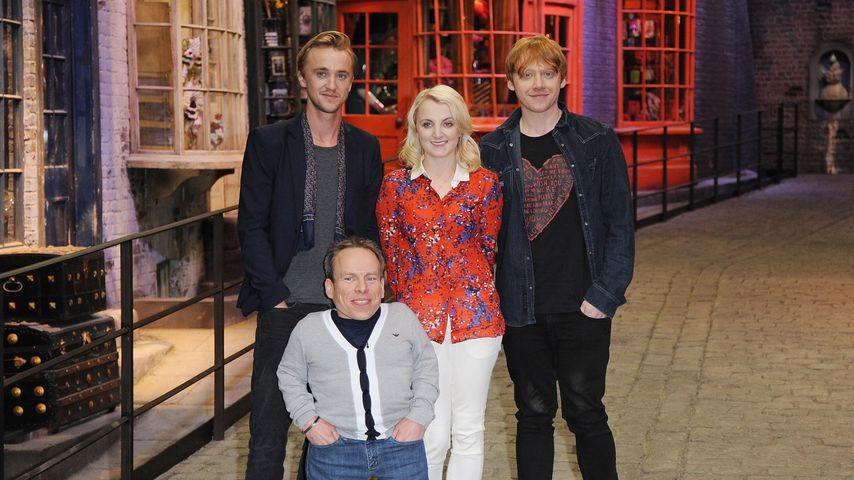 Tom Felton, Evanna Lynch, Rupert Grint und Warwick Davis (vorne) 2012 auf einem Event