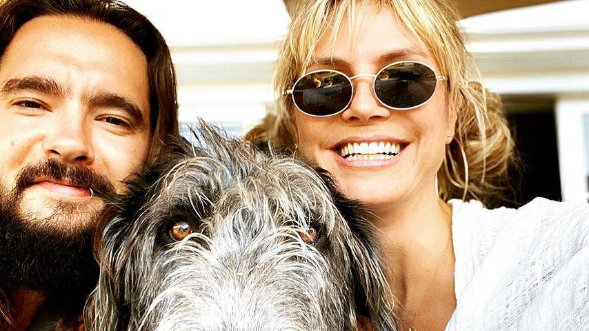 Tom Kaulitz und Heidi Klum mit ihrem Hund